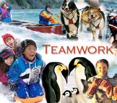 teamwork-nd