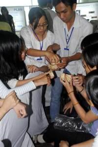 Sinh viên trắc nghiệm làm việc nhóm trong một ngày hội nghề nghiệp - Ảnh: V.T.B
